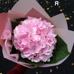 """Купить цветы """"Гортензия ВАУ"""" с доставкой"""