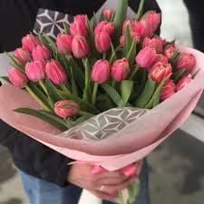31 пионовидный тюльпан