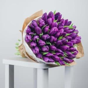 49 тюльпанов фиолетовых