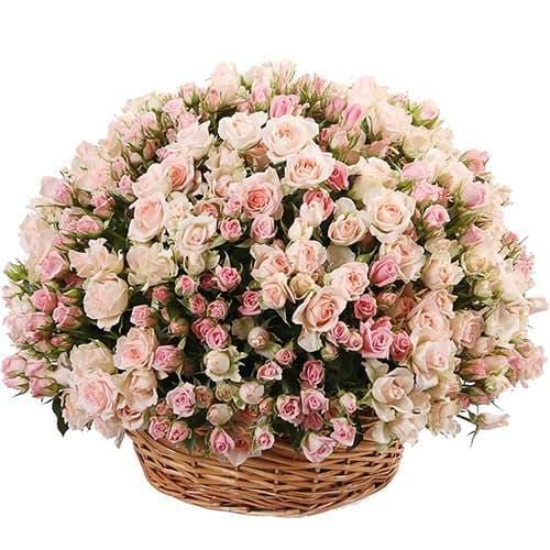 розы корзинка