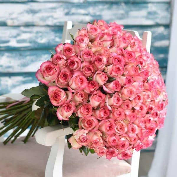 101 нежная роза (эквадор)