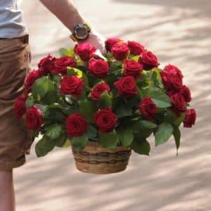 41 красная роза в корзине
