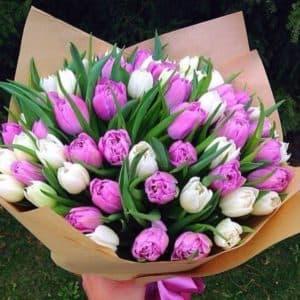 букет фиолетово белых тюльпанов