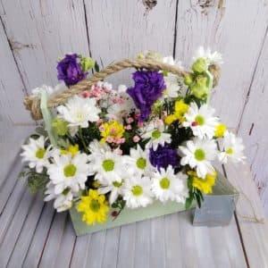 летниц ящик с цветами