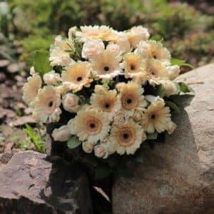 Букет из кремовых роз и гербер