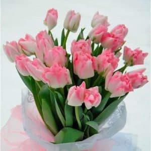 Букет из пионовидных тюльпанов