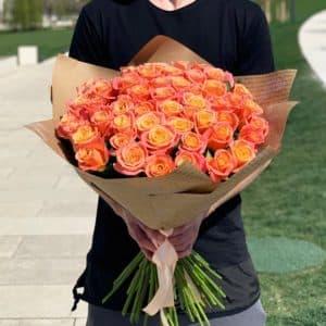 Розы 51 мисс пигги