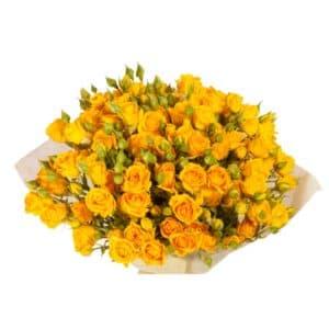 Кустовые розы
