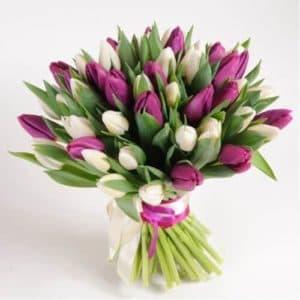 Тюльпаны белые и фиолетовые