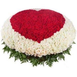 1001 Роза Сердце