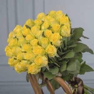 Желтые розы (60 см)