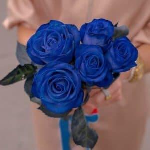 5 Синих Роз (70 см.)