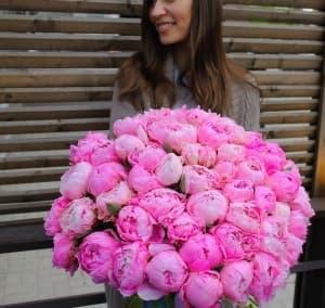 Пионы цветы тут