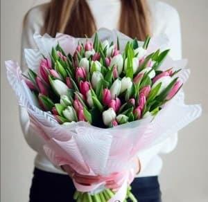 тюльпаны 101 шт