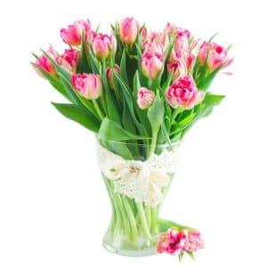 тюльпаны амбре