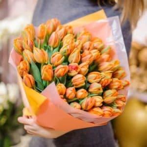49 Пионовидных тюльпанов