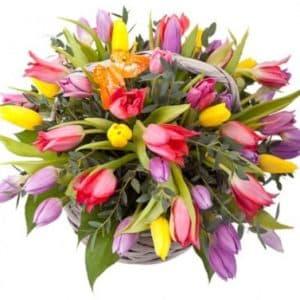 51 разноцветный тюльпан в корзине