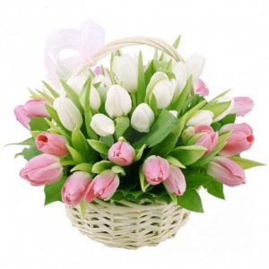 51 тюльпан в корзине