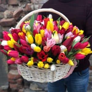 79 разноцветных тюльпанов в корзине