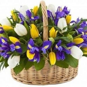 Тюльпаны и ирисы в корзине