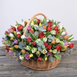 101 разноцветный тюльпан в корзине