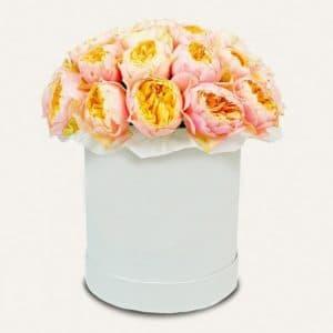Пионовидная роза Вувузела в коробке