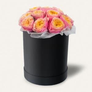 Пионовидная роза Вувузела в черной коробке