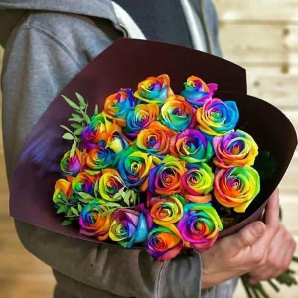 21 радужная роза
