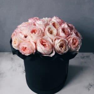 Пионовидные розы Анджи Романтика в черной коробке