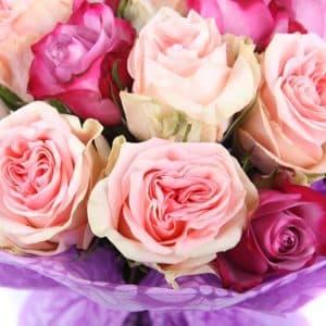 21 белая и лиловая роза