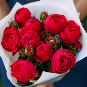 9 пионовидных красных роз