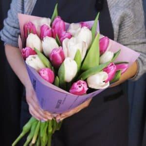25 белых и лавандовых тюльпанов
