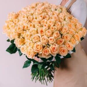 101 персиковая роза