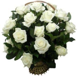 Корзина с 21 белой розой и зеленью
