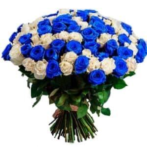201 синяя и белая роза