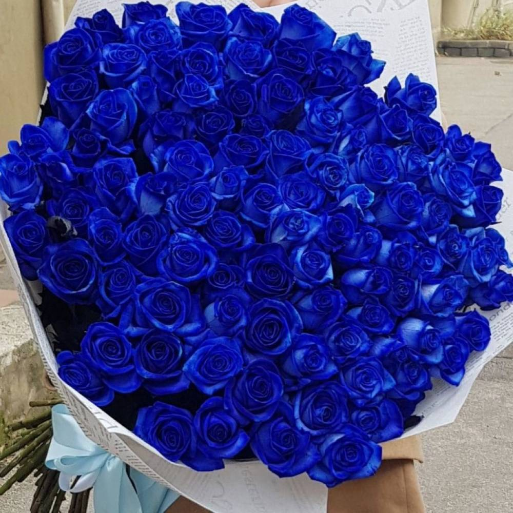 огромные букеты синих роз картинки изготовлению