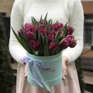 25 фиолетовых пионовидных тюльпанов в коробке