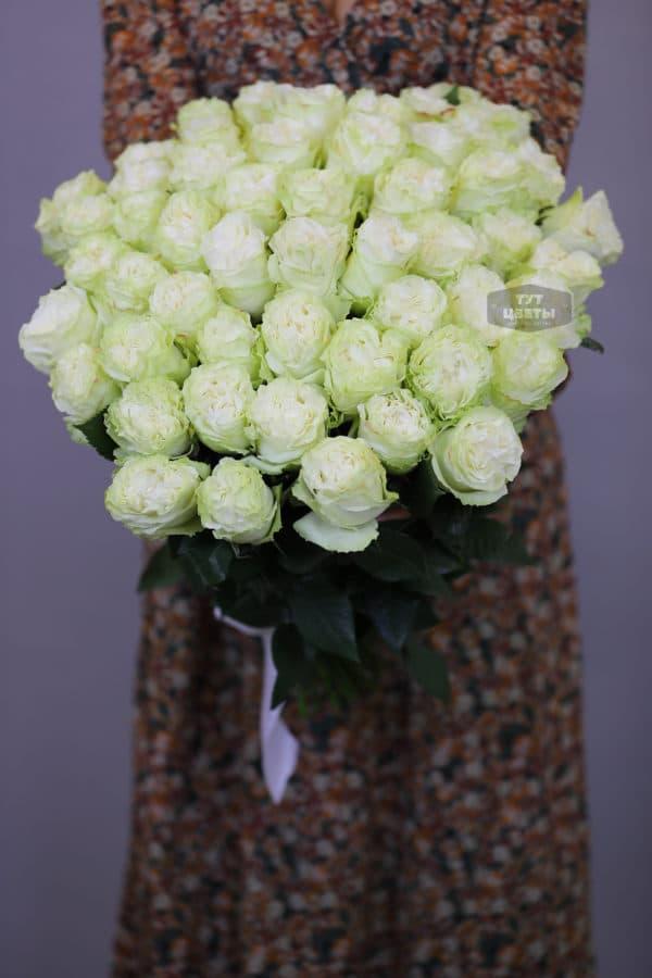 51 белая роза Эквадор