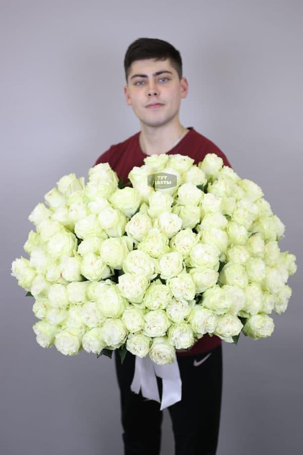 101 белая роза Эквадор