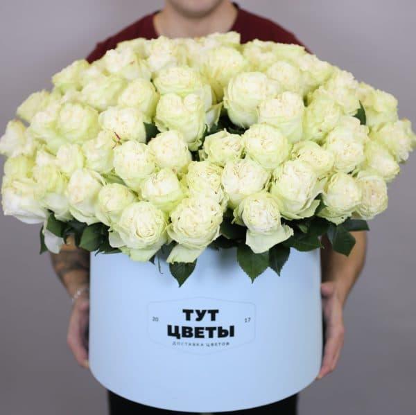 101 белая роза Эквадор в коробке
