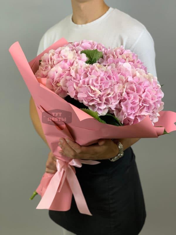 5 розовых гортензий