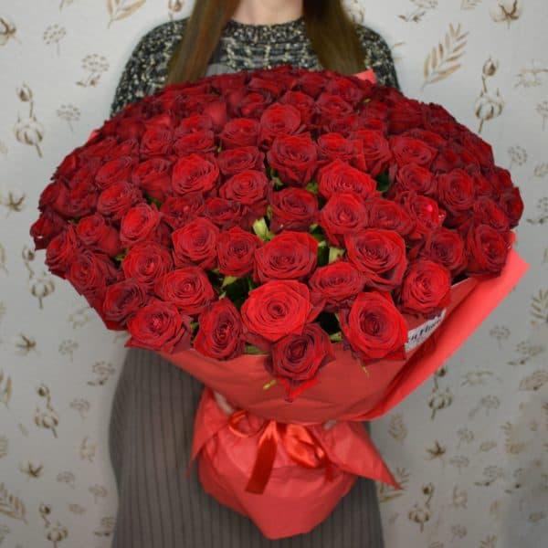 101 ароматная бархатная роза Люкс