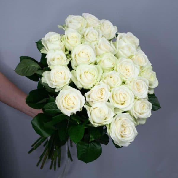 31 нежно персиковая роза с доставкой