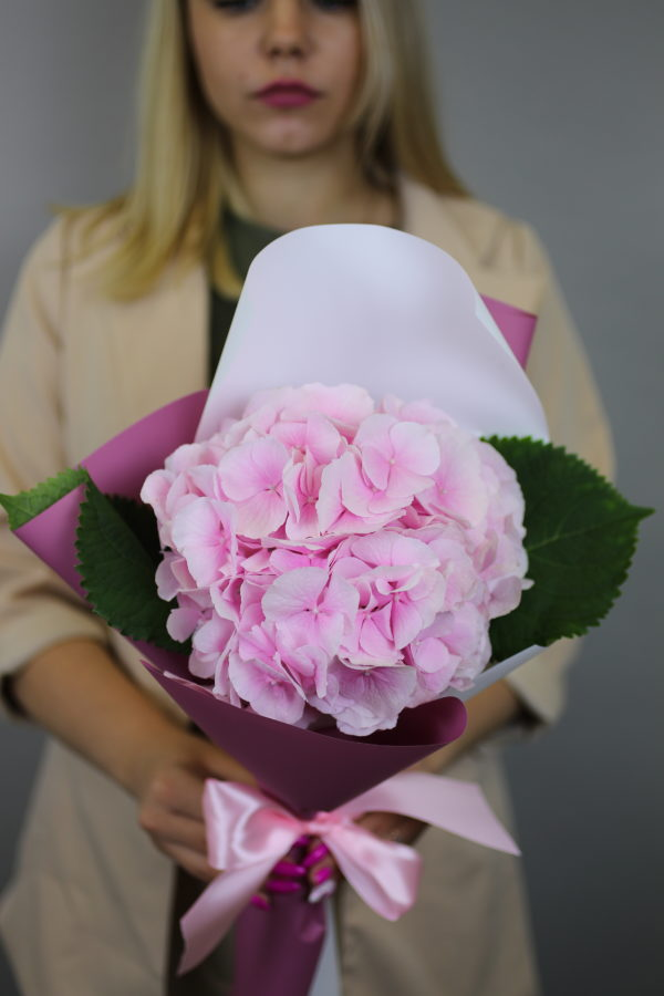 1 розовая гортензия