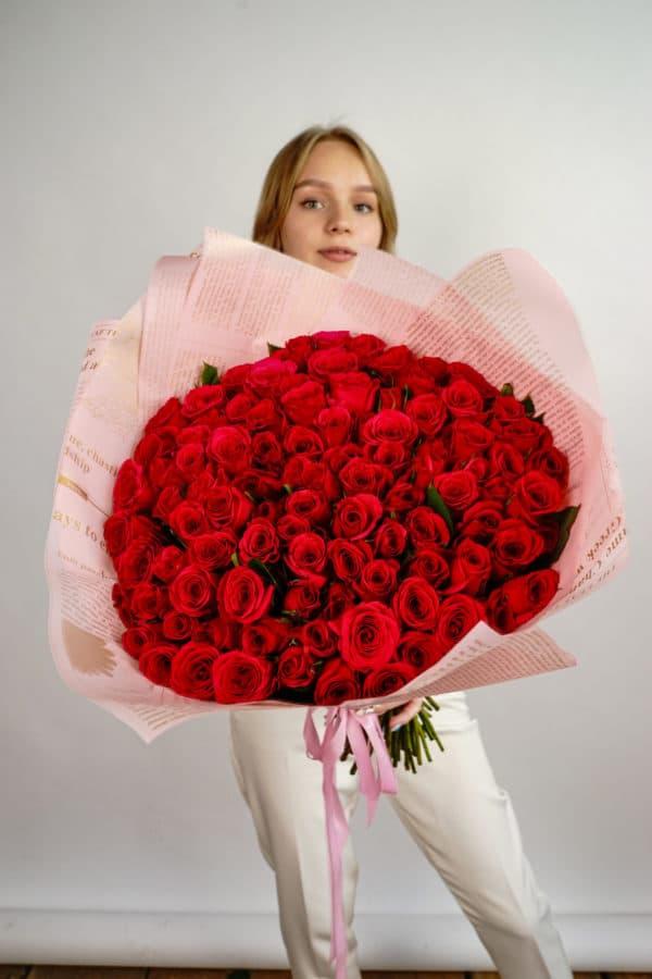 101 роза кения малиновая