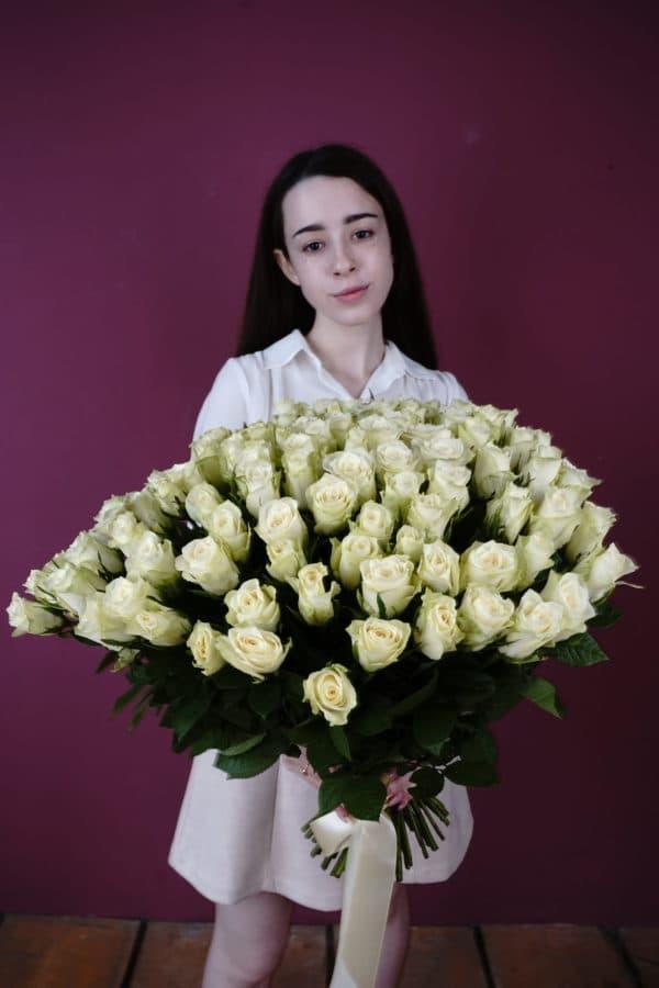 101 роза кения белая
