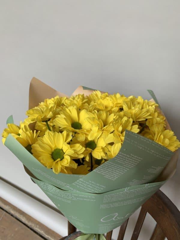 5 кустовых ромашковидных хризантем жетлых
