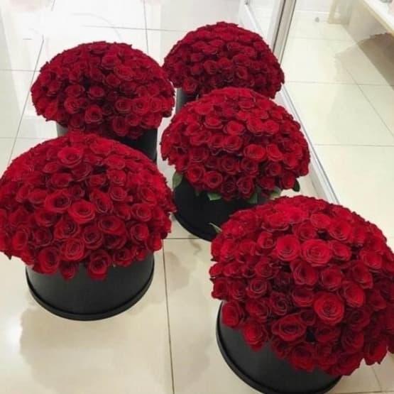 505 роз (в шляпной коробке)