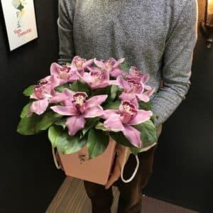 Коробочка с фиолетовой орхидеей