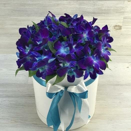 Синие орхидеи в коробке